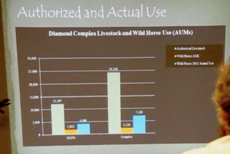 Chart from showing forage allotments in the Diamond Complex. Wild horses at AML are orange, current is blue and green represents livestock
