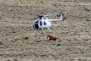 Antelope Complex, Superbowl Sunday, February 2011