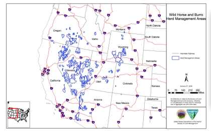 BLM map of areas managed for wild horses