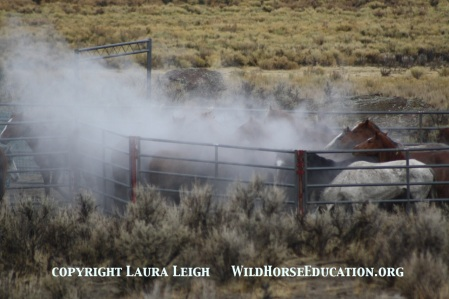 Many bands were run in temperatureswell below freezing, Owyhee Complex