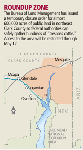 Area of Bundy's cattle, LATimes map