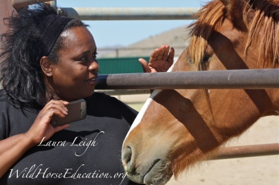 Michelle Blackwell meeting one of the wild horses available for adoption at PVC