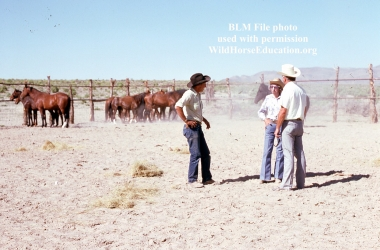 Tour being given to Velma Johnston, Wild Horse Annie, of the first capture of wild horses by the BLM