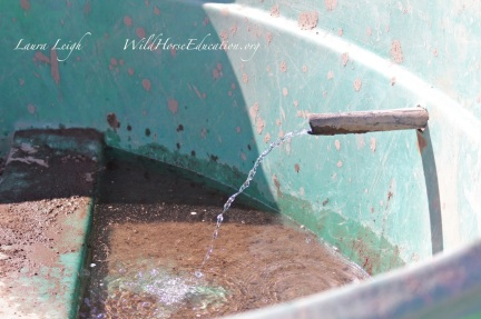 """photo showing flow of Cadet Springs after receptacle was """"reattached"""""""