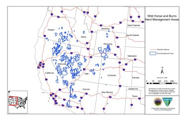 BLM map of current herd management areas (HMAs) that have management objectives set through a frame in land use planning.