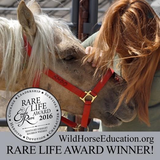 Eagle Life Award-2
