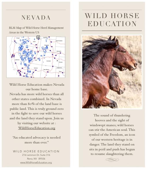 Countdown to 2018: Top Ten – Wild Horse Education