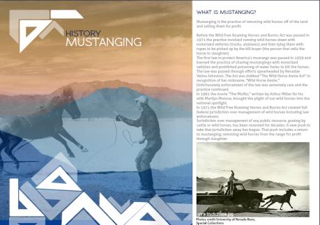 Mustanging