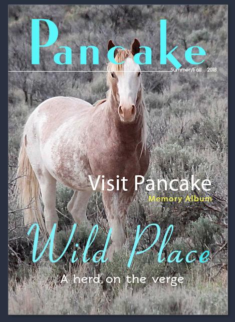 PancakeMagazine
