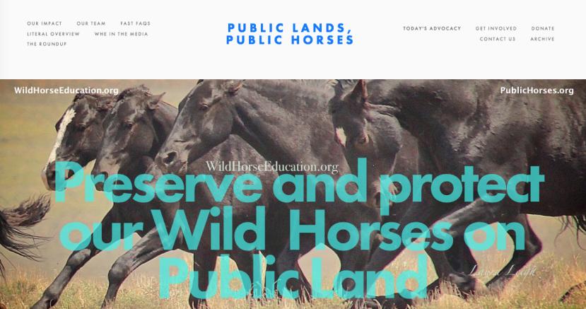 PublicHorses